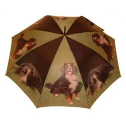 Schirm Berner Sännehund 96 cm