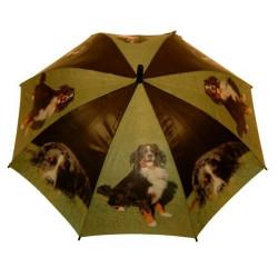 Schirm Berner Sännehund 78 cm
